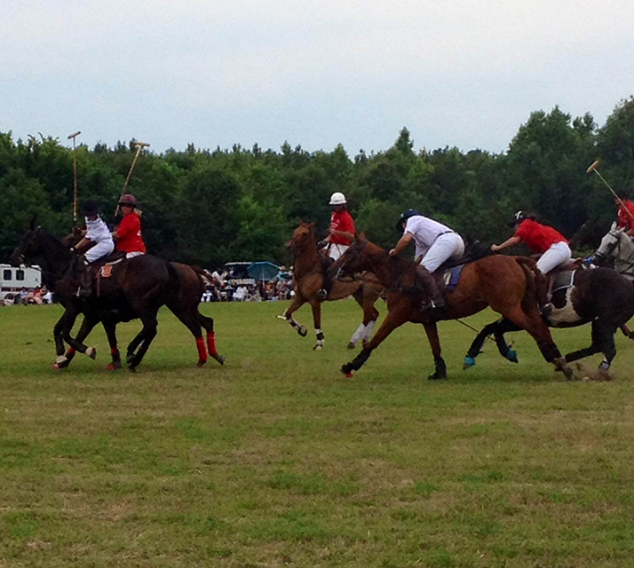 Polo Match players