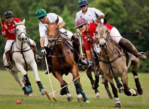Polo Match 2015 action